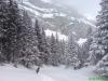 schneeschuhtour-gulmen-01