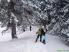 schneeschuhtour-gulmen-04
