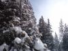 schneeschuhtour-gulmen-11
