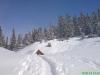 schneeschuhtour-gulmen-12