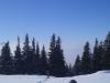 schneeschuhtour-gulmen-25