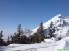 schneeschuhtour-gulmen-35