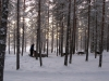 2011-finnland-45