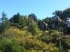Gipfelfondue (11)